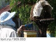 Пасечник. Стоковое фото, фотограф евгений блинов / Фотобанк Лори