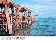 Купить «Деревянный пирс», фото № 910021, снято 31 декабря 2008 г. (c) Дмитрий Ростовцев / Фотобанк Лори