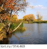 Купить «Осенний пейзаж», фото № 914469, снято 4 октября 2008 г. (c) Vdovina Elena / Фотобанк Лори