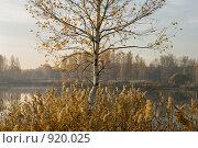 Купить «Осенний пейзаж. Восход солнца», фото № 920025, снято 8 октября 2008 г. (c) Юрий Бельмесов / Фотобанк Лори
