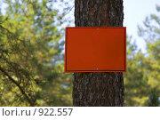 Купить «Пустая табличка на дереве», фото № 922557, снято 16 июня 2009 г. (c) Максим Солдатов / Фотобанк Лори