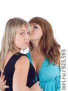 Купить «Две молодые девушки», фото № 923593, снято 1 августа 2008 г. (c) Сергей Сухоруков / Фотобанк Лори