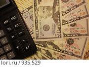 Купить «Американские доллары», фото № 935529, снято 25 сентября 2008 г. (c) Анжелина Селинская / Фотобанк Лори