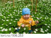 Купить «Маленькая девочка сидит в белых цветах», фото № 936253, снято 9 мая 2009 г. (c) Кекяляйнен Андрей / Фотобанк Лори