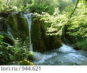 Маленький водопад по замшелому пригорку. Стоковое фото, фотограф Евгения Кускова / Фотобанк Лори
