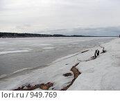 Купить «Река Вычегда в мае», фото № 949769, снято 4 мая 2009 г. (c) Ирина Андреева / Фотобанк Лори