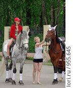 Красивые лошадки (2009 год). Редакционное фото, фотограф Валерий Кондрашов / Фотобанк Лори