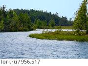 Поворот русла реки в лесу. Стоковое фото, фотограф Кекяляйнен Андрей / Фотобанк Лори