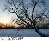 Купить «Зимний закат», фото № 970997, снято 31 января 2009 г. (c) Erudit / Фотобанк Лори