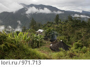 Купить «Деревня папуасов в провинции Ириан Джай», фото № 971713, снято 3 ноября 2007 г. (c) Александр Киселев / Фотобанк Лори