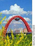 Купить «Живописный мост на фоне цветущих растений, Москва», фото № 973633, снято 11 июля 2009 г. (c) Fro / Фотобанк Лори