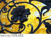Купить «Решетка Михайловского сада», фото № 976053, снято 25 сентября 2008 г. (c) Татьяна Едренкина / Фотобанк Лори