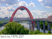 Купить «Живописный мост, Москва», фото № 979257, снято 11 июля 2009 г. (c) Fro / Фотобанк Лори