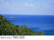 Кипр - увидеть и влюбиться. Смешанный лес и синее море (2009 год). Стоковое фото, фотограф Дамир / Фотобанк Лори