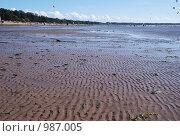 Берег залива. Пляж (2009 год). Стоковое фото, фотограф Татьяна Князева / Фотобанк Лори