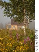 Домик в деревне. Стоковое фото, фотограф Моисеева Маргарита / Фотобанк Лори