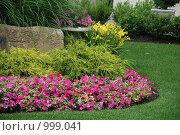 Ландшафтный дизайн сада. Стоковое фото, фотограф Ольга Утлякова / Фотобанк Лори