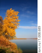 Купить «Желтое дерево над рекой», фото № 1008689, снято 5 октября 2008 г. (c) Михаил Коханчиков / Фотобанк Лори