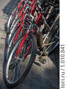 Экологический транспорт. Стоковое фото, фотограф Юрий Викулин / Фотобанк Лори
