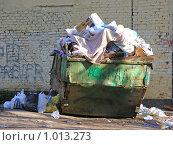 Купить «Мусорный контейнер», эксклюзивное фото № 1013273, снято 22 апреля 2008 г. (c) lana1501 / Фотобанк Лори