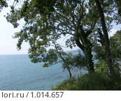 Купить «Море», фото № 1014657, снято 19 июля 2009 г. (c) Хорольская Екатерина / Фотобанк Лори