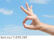 """Купить «Рука с жестом """"всё хорошо""""», фото № 1015141, снято 30 июля 2009 г. (c) Сухоносова Анастасия / Фотобанк Лори"""
