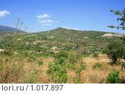 Горный кипрский пейзаж (2009 год). Стоковое фото, фотограф Дамир / Фотобанк Лори