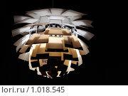 Купить «Современная люстра», фото № 1018545, снято 25 ноября 2008 г. (c) Losevsky Pavel / Фотобанк Лори