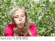 Купить «Девушка дует на лепестки», фото № 1018953, снято 9 мая 2009 г. (c) Losevsky Pavel / Фотобанк Лори