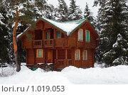 Купить «Деревянный дом в зимнем лесу», фото № 1019053, снято 18 февраля 2009 г. (c) Losevsky Pavel / Фотобанк Лори