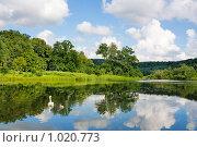 Купить «Лебединое озеро», фото № 1020773, снято 11 июля 2009 г. (c) Алексас Кведорас / Фотобанк Лори