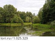 Купить «Речной пейзаж», фото № 1025329, снято 8 августа 2009 г. (c) Андрияшкин Александр / Фотобанк Лори