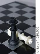 Шахматные короли: победитель и побежденный. Стоковое фото, фотограф Денис Гоппен / Фотобанк Лори