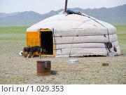 Монгольская юрта в степи (2009 год). Стоковое фото, фотограф Александр Подшивалов / Фотобанк Лори