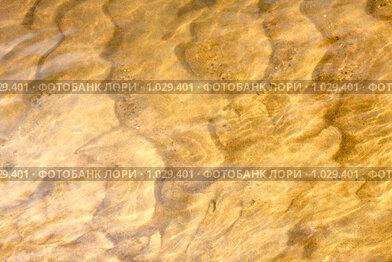 Купить «Песок на дне моря», фото № 1029401, снято 18 февраля 2020 г. (c) ElenArt / Фотобанк Лори