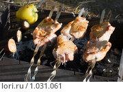 Купить «Мясо крупными кусками на мангале», эксклюзивное фото № 1031061, снято 10 августа 2009 г. (c) Александр Щепин / Фотобанк Лори
