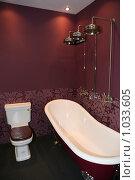 Купить «Роскошный интерьер ванной комнаты», фото № 1033605, снято 31 марта 2009 г. (c) Журавлева Виктория / Фотобанк Лори