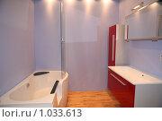 Купить «Роскошный интерьер ванной комнаты», фото № 1033613, снято 31 марта 2009 г. (c) Журавлева Виктория / Фотобанк Лори