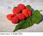 Купить «Ягоды малины», фото № 1034761, снято 18 июля 2009 г. (c) Елена Васильева / Фотобанк Лори