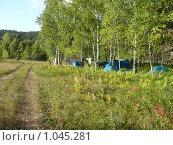 Купить «Палаточный лагерь в березняке. Лето.», фото № 1045281, снято 26 июля 2009 г. (c) Дживита / Фотобанк Лори