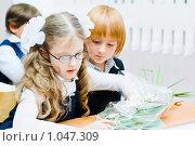 Купить «Первого сентября за партой», фото № 1047309, снято 20 августа 2009 г. (c) Евгений Захаров / Фотобанк Лори