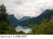 Купить «Вид на фьорд», фото № 1048997, снято 12 августа 2008 г. (c) Роман Мухин / Фотобанк Лори
