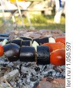 Купить «Шашлык из баклажанов и помидоров», фото № 1050597, снято 18 июля 2009 г. (c) Троицкая Алиса / Фотобанк Лори