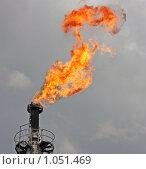 Купить «Факела», фото № 1051469, снято 30 июля 2009 г. (c) Мишарин Алексей / Фотобанк Лори