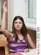 Купить «Отличница на уроке», фото № 1053189, снято 20 августа 2009 г. (c) Оксана Гильман / Фотобанк Лори