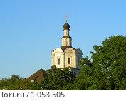 Купить «Москва. Спасо-Андронников монастырь», эксклюзивное фото № 1053505, снято 17 мая 2008 г. (c) lana1501 / Фотобанк Лори