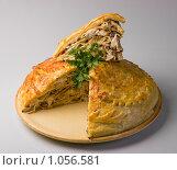 Купить «Курник», фото № 1056581, снято 12 ноября 2008 г. (c) Иван Сазыкин / Фотобанк Лори