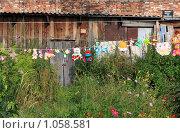 Купить «Игрушки, сохнущие на бельевой веревке», фото № 1058581, снято 22 августа 2009 г. (c) Андрей Николаев / Фотобанк Лори