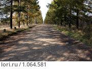 Купить «Пустынная сельская дорога», фото № 1064581, снято 4 октября 2008 г. (c) Юрий Синицын / Фотобанк Лори