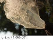 Купить «Дым-усмиритель», фото № 1066601, снято 16 июля 2009 г. (c) Андрей Давиденко / Фотобанк Лори